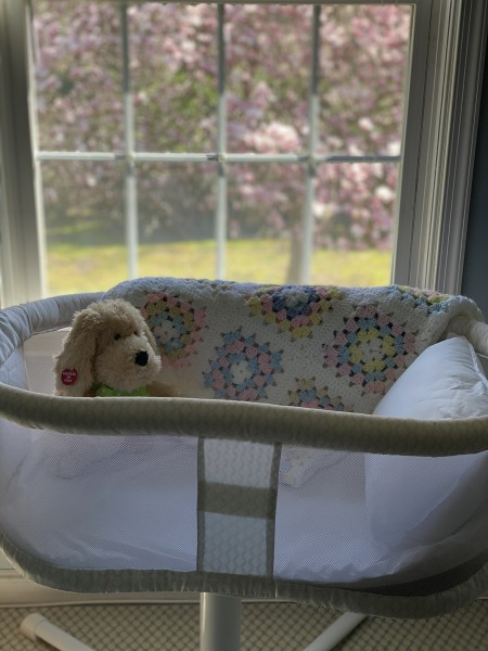 The baby's bassinet with a little stuffed dog that sings and dances just waiting for the baby to join in the fun!