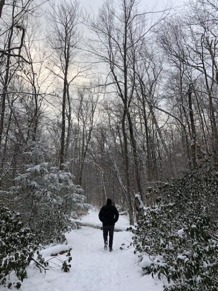 Xmas hiking upstate 2