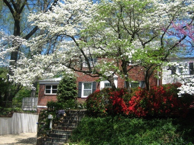 our house in the springtime