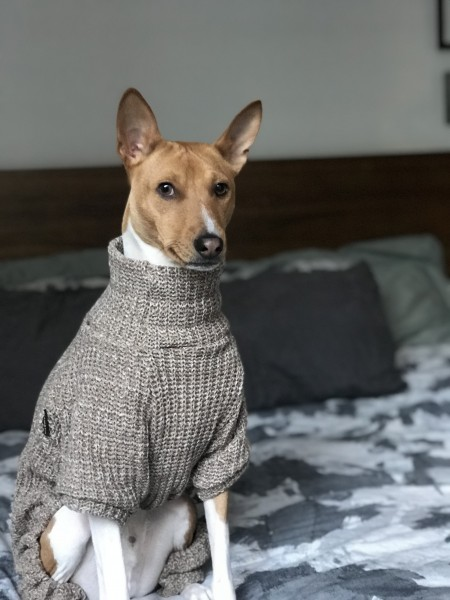 Sweater fashion.