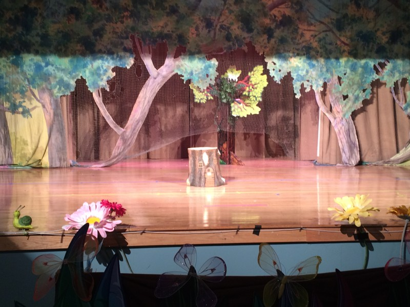 Set I designed for an Elementary School Show
