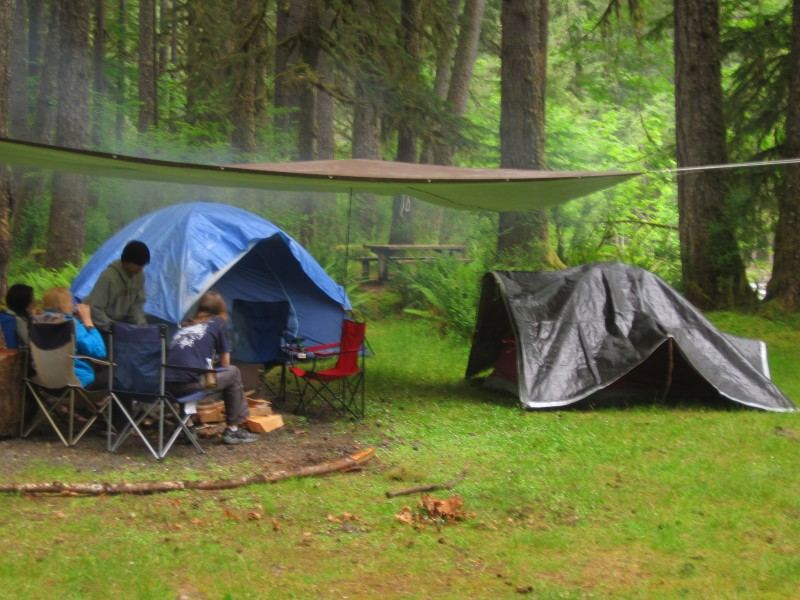 Camp site in Olympic Rain Forest