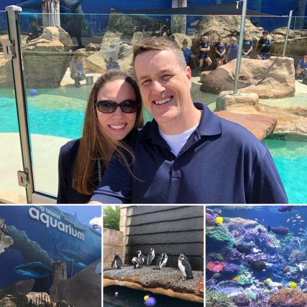 Day at the Aquarium. Penguins were so cute.