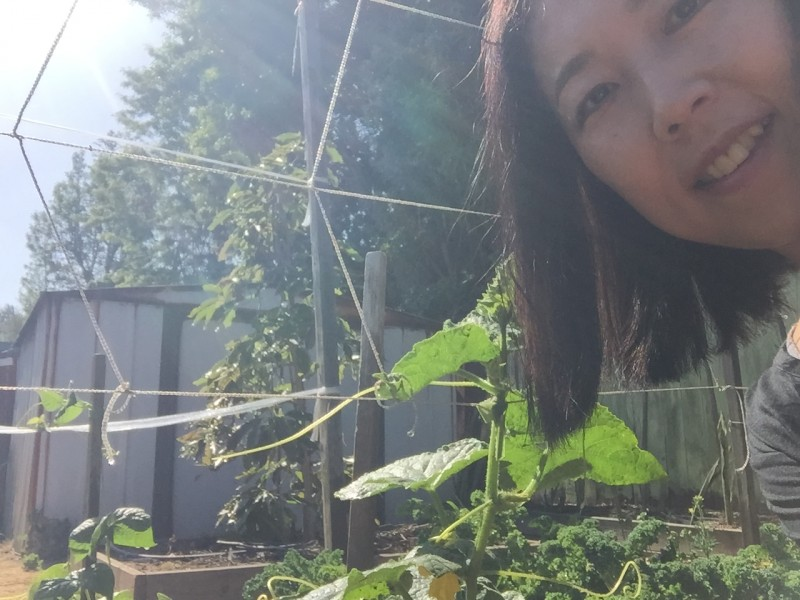 Cucumber is getting bigger!