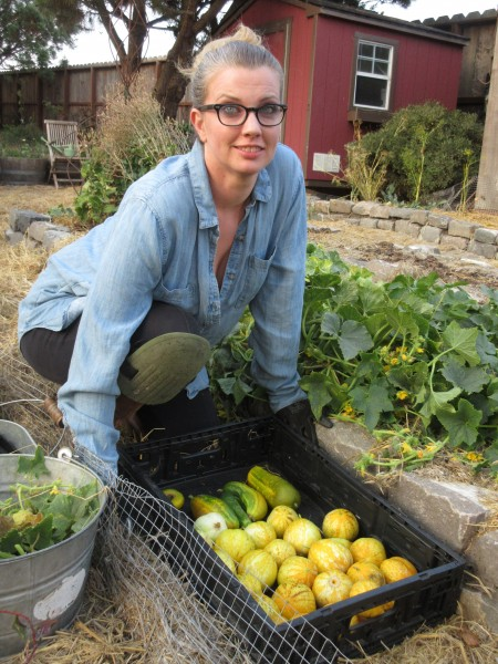 Catherine harvesting lemon cucumbers...they make the best pickles