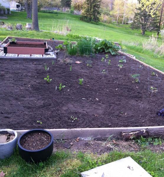 Garden re-fresh