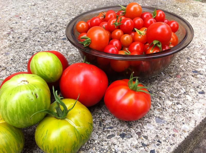 Garden harvesting