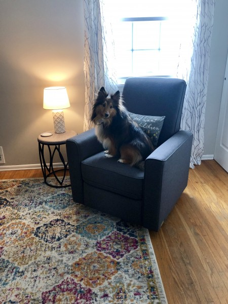 Nursery Chair? Toby approved!