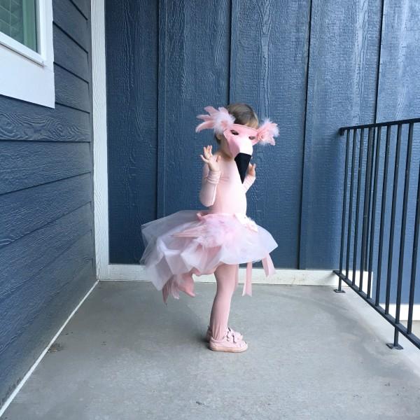 Ruby flamingo