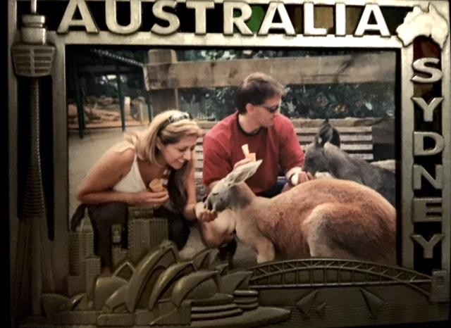 We're playing with kangaroos & wallaby's