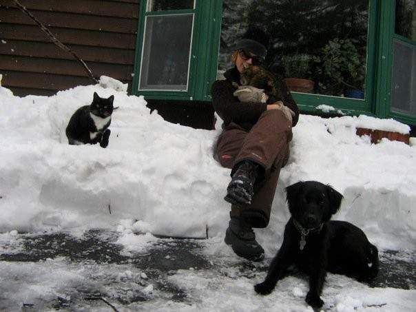 We were talking care of our friend's dog Rudy during a HUGE snow fall.  We had 5 feet of snow and I went out dug a path in the snow that the cats chased each other around in.  (everyone had cabin fever..but napped for the rest of the day by the