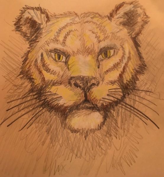 Alan made this tiger