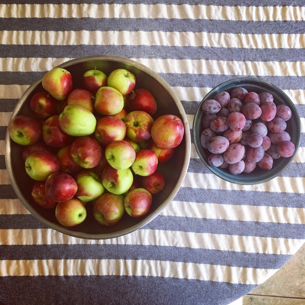 Apples and plums from our yard