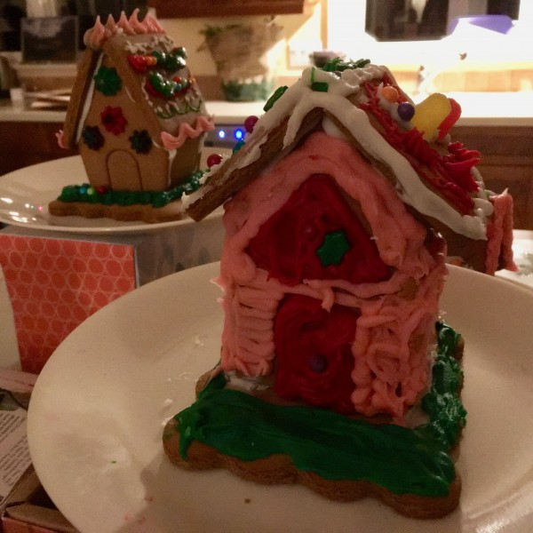 Our nieces & nephews made gingerbread houses for our early Xmas
