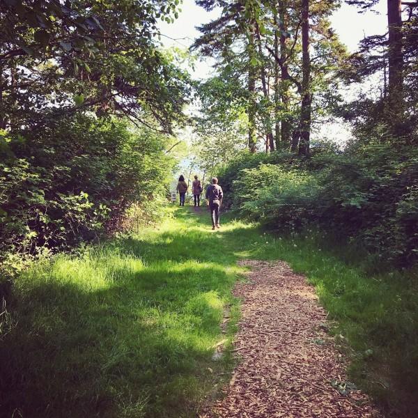 Remembering this beautiful walk we took last summer. Just beyond those trees is the ocean.