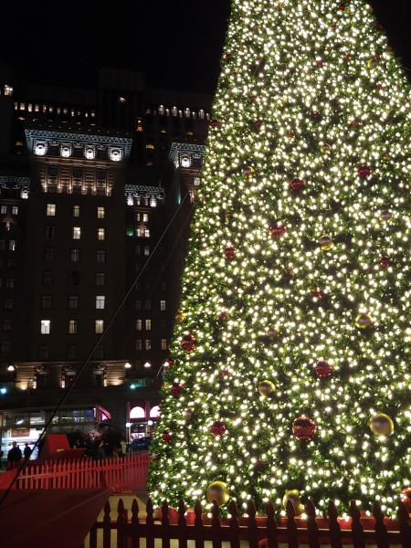 A holiday tradition -- going to downtown San Francisco to see the lights and ice skate!