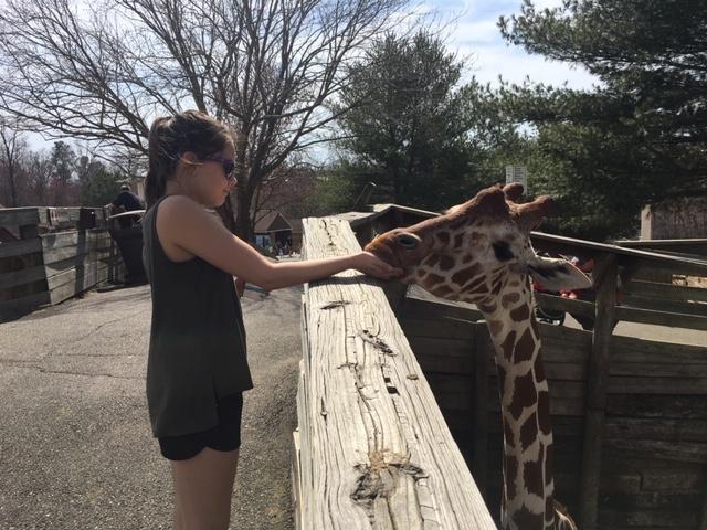 Kam and giraffe