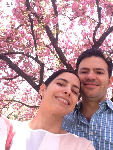 Cherry Blossom in NY