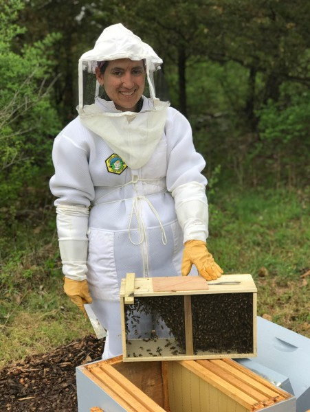 Nicole working with Honey bees.