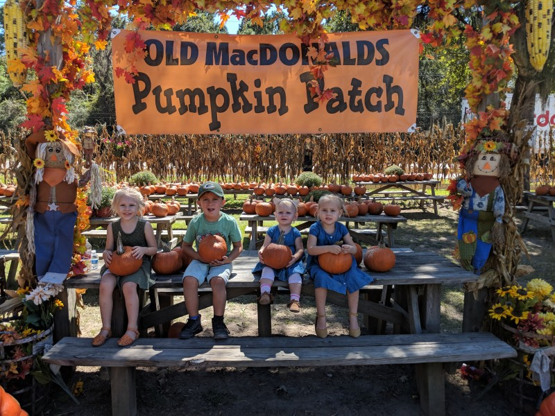 The girls and cousin Smith at the local Pumpkin Patch.