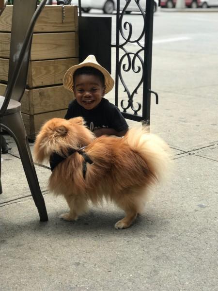 He loves dogs