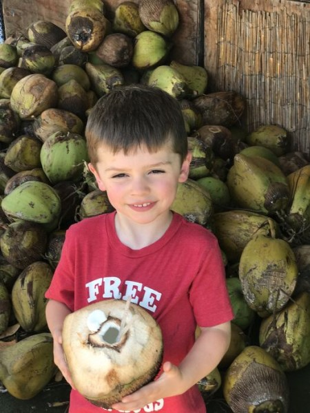 All Deacon talked about the first time he went to Maui was drinking from a coconut. So we found one! Unfortunately he didn't like it.