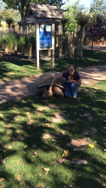 On our way back from Yellowstone, we stopped at the Reptile Gardens in SD to pet giant tortoises, like this one named Tank!
