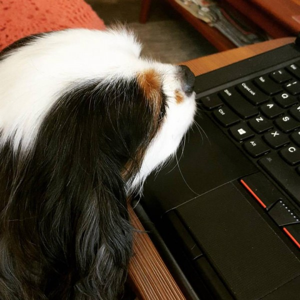 Channing has an aversion to laptops