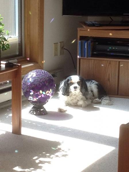 Basking in the sun at Grandma Vicki and Grandpa Geof's