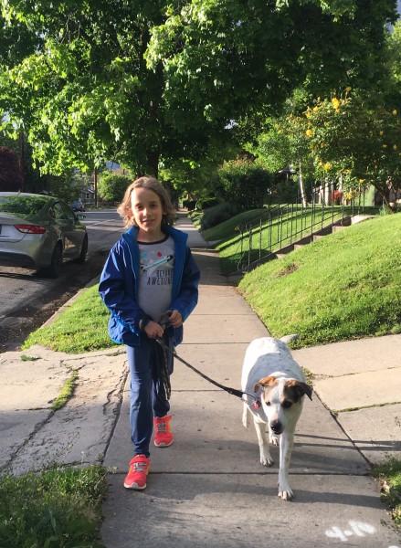 Buddy walks Nellie.