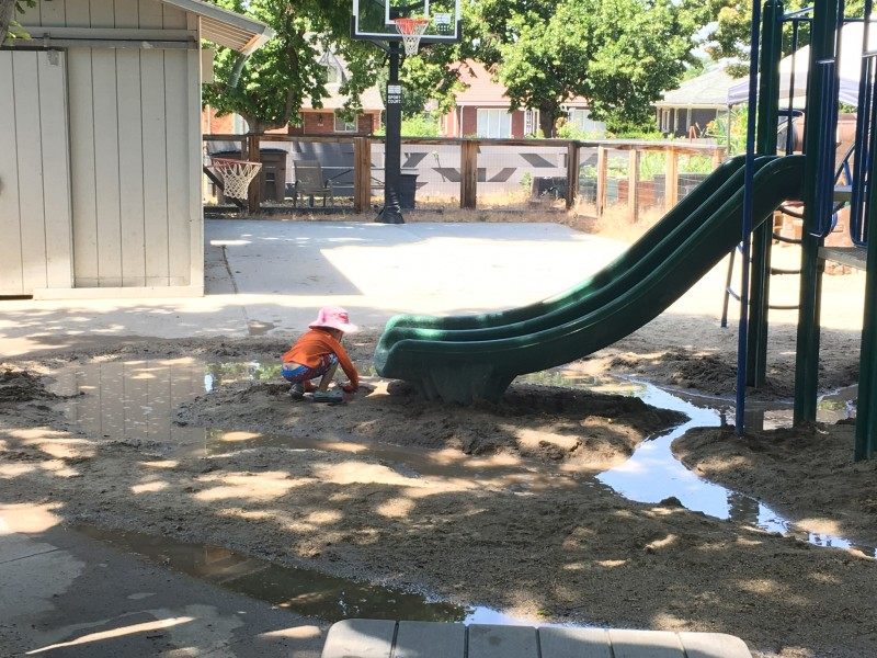 Peach loved digging on his preschool playground.