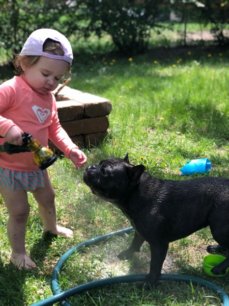 Backyard fun- we can usually be found outside playing in our fenced-in yard.