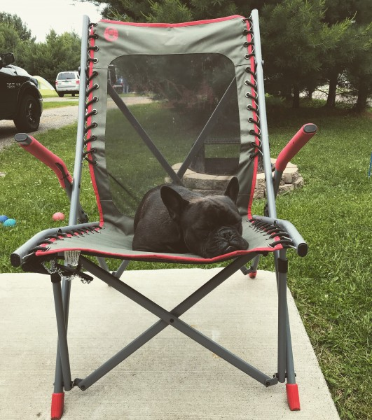 Zoey LOVES camping too!