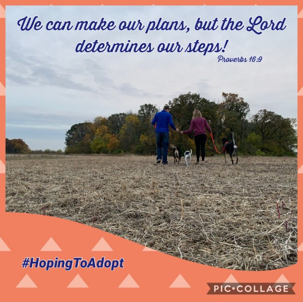 Planning our steps