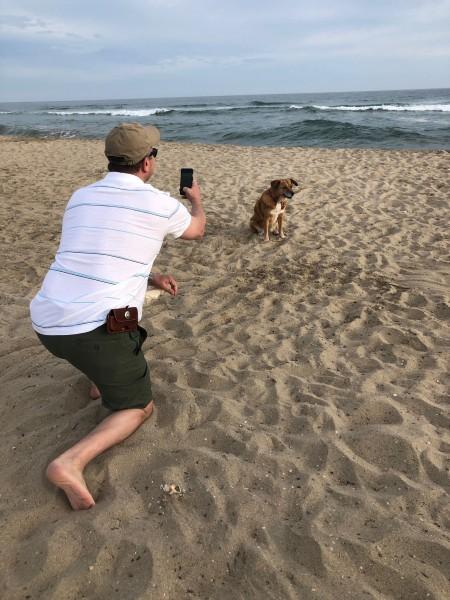 Summer - Newport Beach