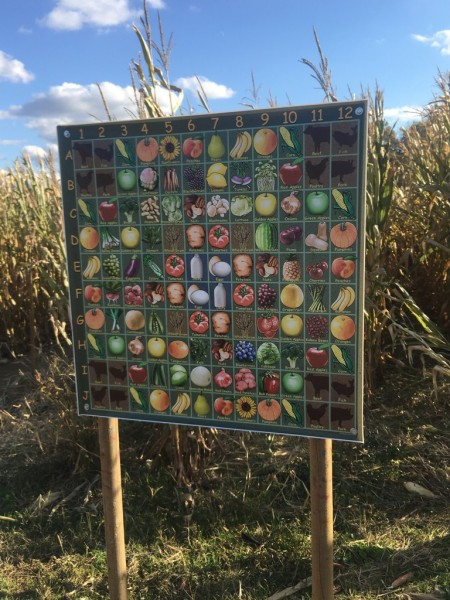Terhune Orchard - Find Your Lucky Food Game Part 2