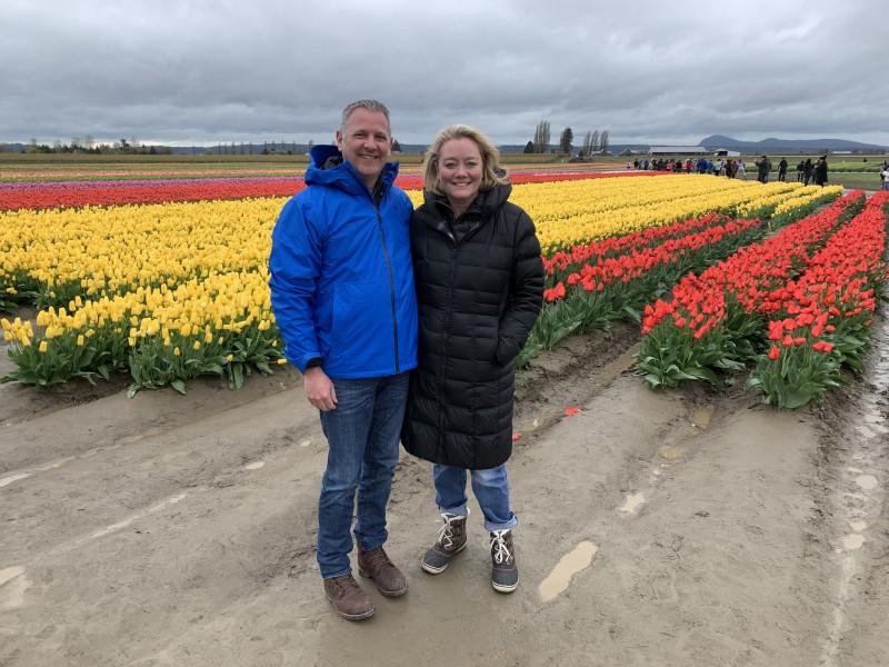 Tulip fields in LaConner