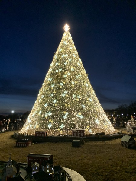 Christmas included going to see the National Christmas Tree in DC!