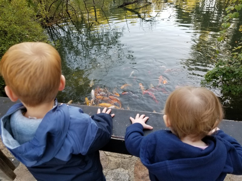 Our niece and nephew enjoying the fish at the zoo!