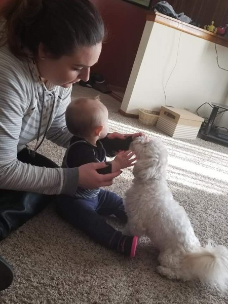 Our sister in law playing with her daughter and our dog Louie
