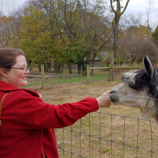 Amy visiting with one of the alpacas at our local farm
