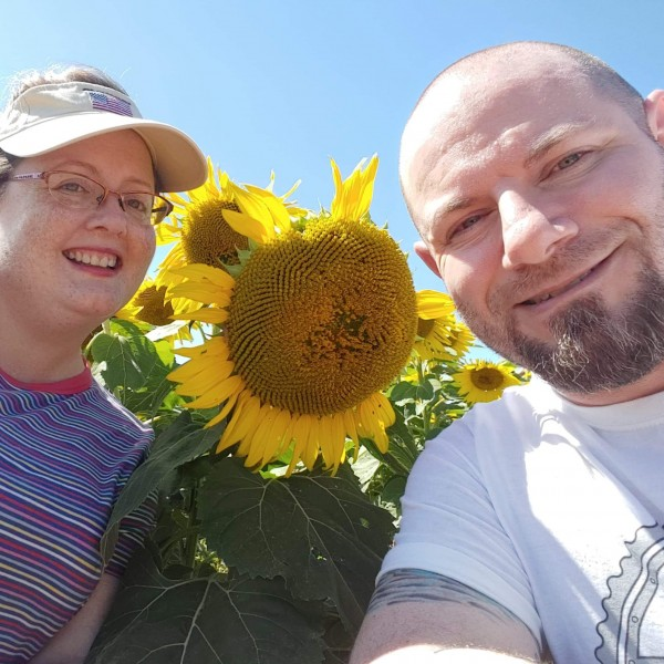 Sunflower farm on Long Island