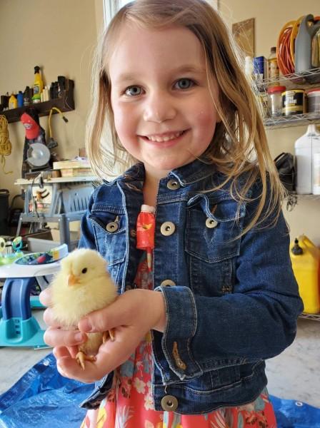 Julianne loves holding the baby chicks.