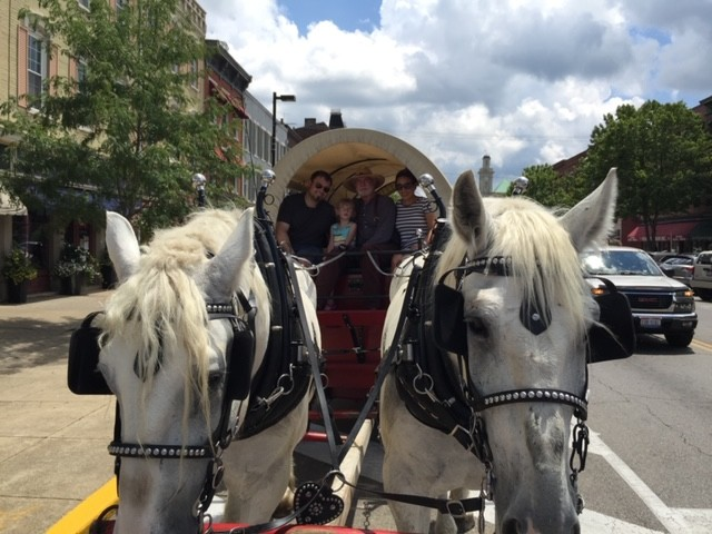 Carriage ride with our niece