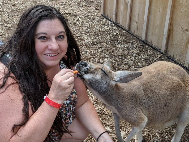 Feeding a Kangaroo! Can't wait to get these opportunities with my child.