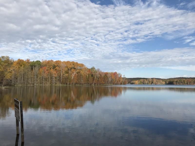 Fall inland lake view