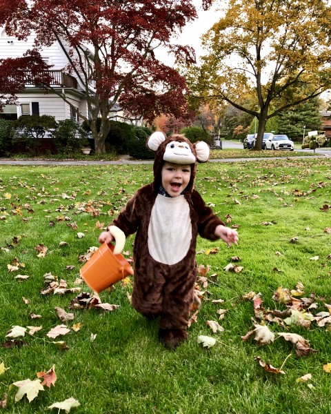Monkeying around on Halloween