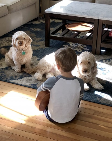 Singing for our dogs, Harvey and Hudson