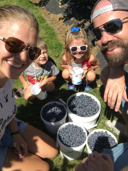 We picked 28lbs of blueberries today!