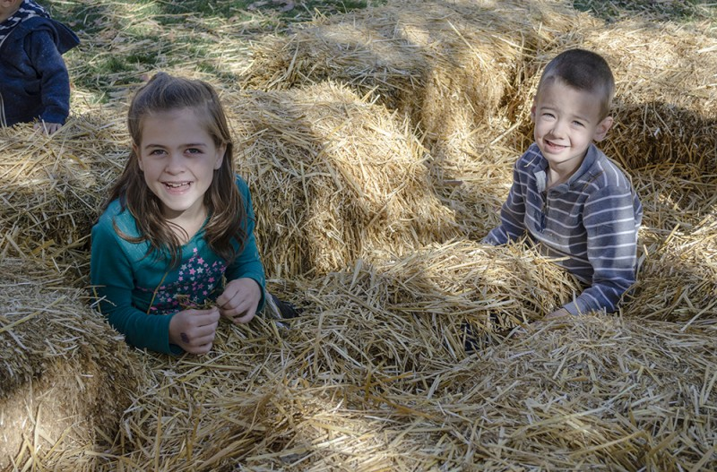 Our kids are very energetic, so a tumble in the hay at the scarecrow festival is perfect for them.